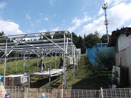 静岡県榛原郡川根本町でソーラーシェアリングが始動